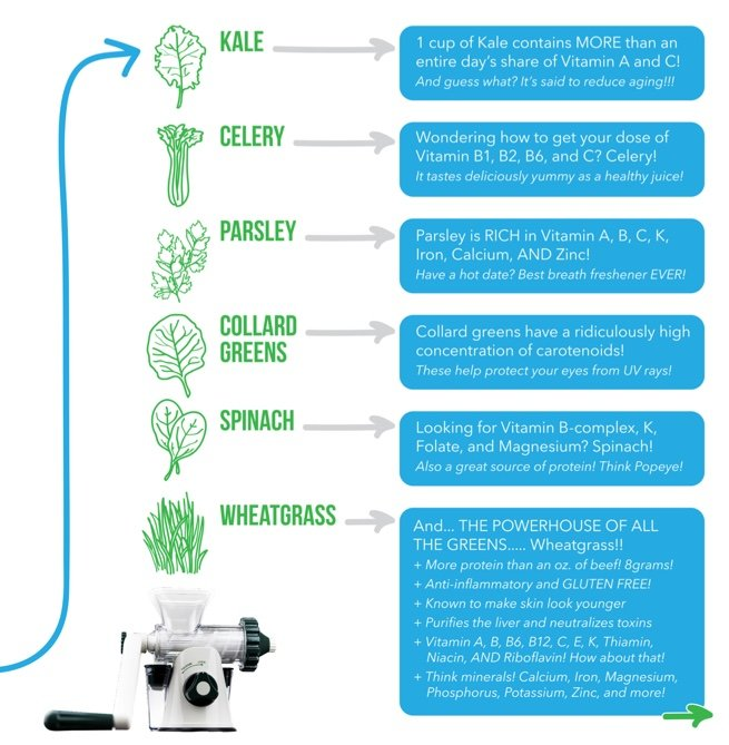 What can the healthy juicer juice?  Here you go!