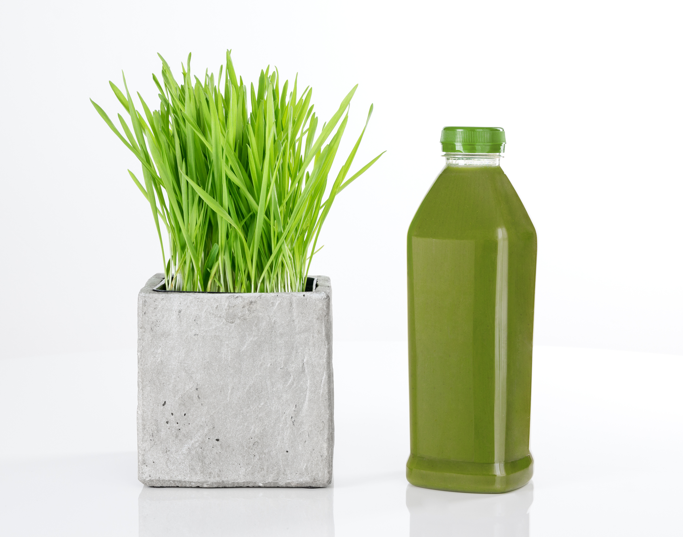 The 10 Best Kept Secrets About Wheatgrass