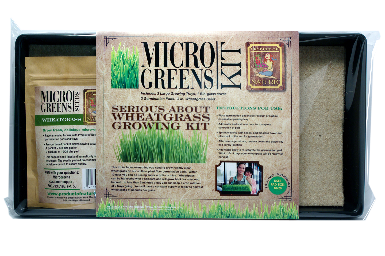 Wheatgrass Growing Kit